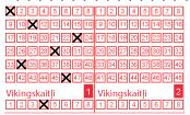Viking lotto odin variant
