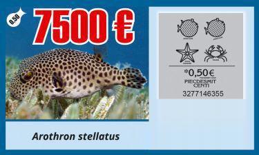Sprints zivis